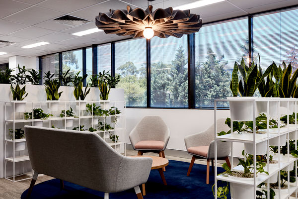 Beiersdorf Sydney, designed by Incorp | Photography by Luc Redmond